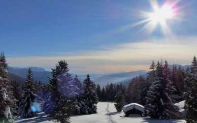 Winter / inverno_7